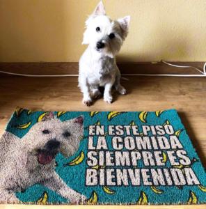Felpudo personalizado con texto y la foto de un perro